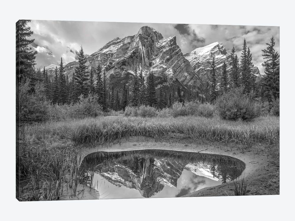 Peak reflected in pond, Mount Kidd, Kananaskis Country, Alberta, Canada by Tim Fitzharris 1-piece Canvas Artwork