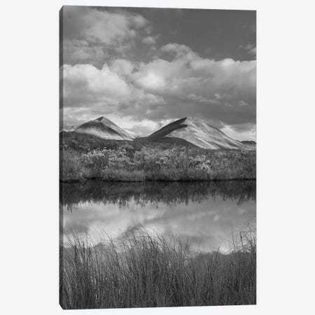 Peaks along river in autumn, Ogilvie Mountains, Tombstone Territorial Park, Yukon, Canada Canvas Print #TFI1716} by Tim Fitzharris Canvas Art