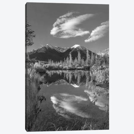 Peaks, Sundance Range, Vermilion Lakes, Banff National Park, Alberta, Canada Canvas Print #TFI1717} by Tim Fitzharris Canvas Artwork
