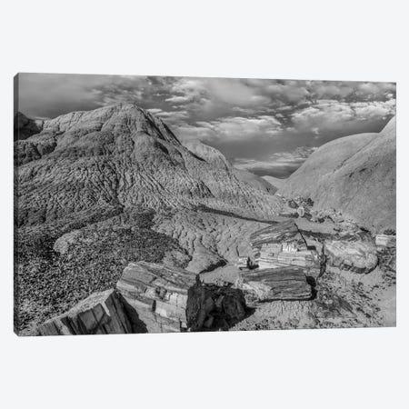Petrified logs, Blue Mesa, Petrified Forest National Park, Arizona Canvas Print #TFI1718} by Tim Fitzharris Canvas Print
