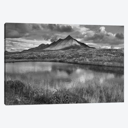Pond and Ogilvie Mountains, Tombstone Territorial Park, Yukon, Canada Canvas Print #TFI1720} by Tim Fitzharris Canvas Wall Art