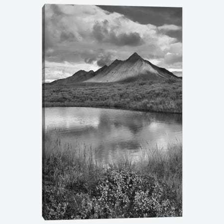 Pond and Ogilvie Mountains, Tombstone Territorial Park, Yukon, Canada Canvas Print #TFI1721} by Tim Fitzharris Canvas Artwork