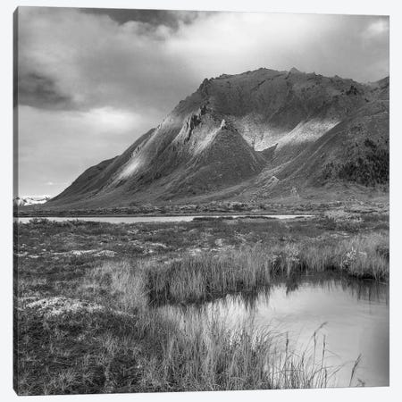 Pond and Ogilvie Mountains, Tombstone Territorial Park, Yukon, Canada Canvas Print #TFI1722} by Tim Fitzharris Canvas Art