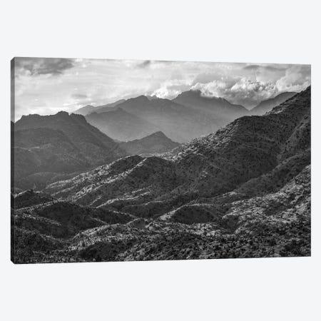 Pusch Ridge Wilderness, Coronado National Forest,  Arizona Canvas Print #TFI1724} by Tim Fitzharris Canvas Print