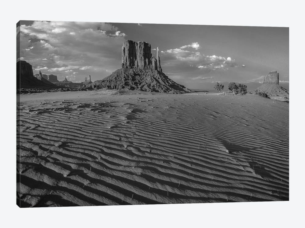 Sand dunes and the Mittens, Monument Valley Navajo Tribal Park, Arizona by Tim Fitzharris 1-piece Canvas Artwork