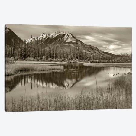 Taiga and peak, Moberly Flats, De Smet Range, Rocky Mountains, Jasper National Park, Alberta, Canada Canvas Print #TFI1800} by Tim Fitzharris Canvas Art Print