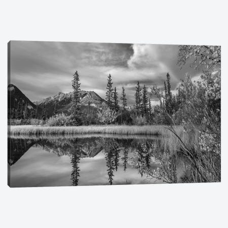 Taiga and peaks, Moberly Flats, De Smet Range, Rocky Mountains, Jasper National Park, Alberta, Canada Canvas Print #TFI1801} by Tim Fitzharris Canvas Print