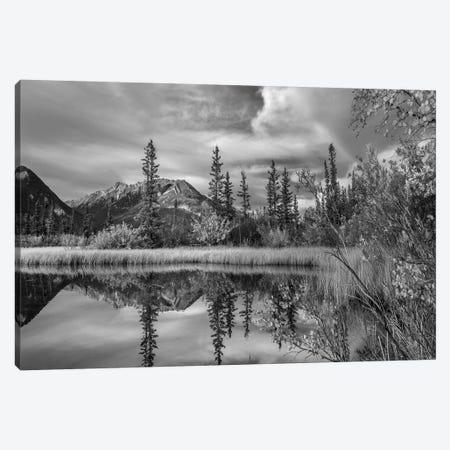 Taiga and peaks, Moberly Flats, De Smet Range, Rocky Mountains, Jasper National Park, Alberta, Canada Canvas Print #TFI1801} by Tim Fitzharris Canvas Print
