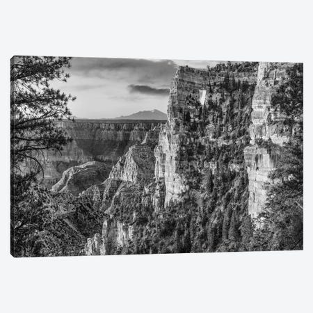 The Window near Walhalla Overlook, North Rim, Grand Canyon National Park, Arizona Canvas Print #TFI1808} by Tim Fitzharris Canvas Art Print