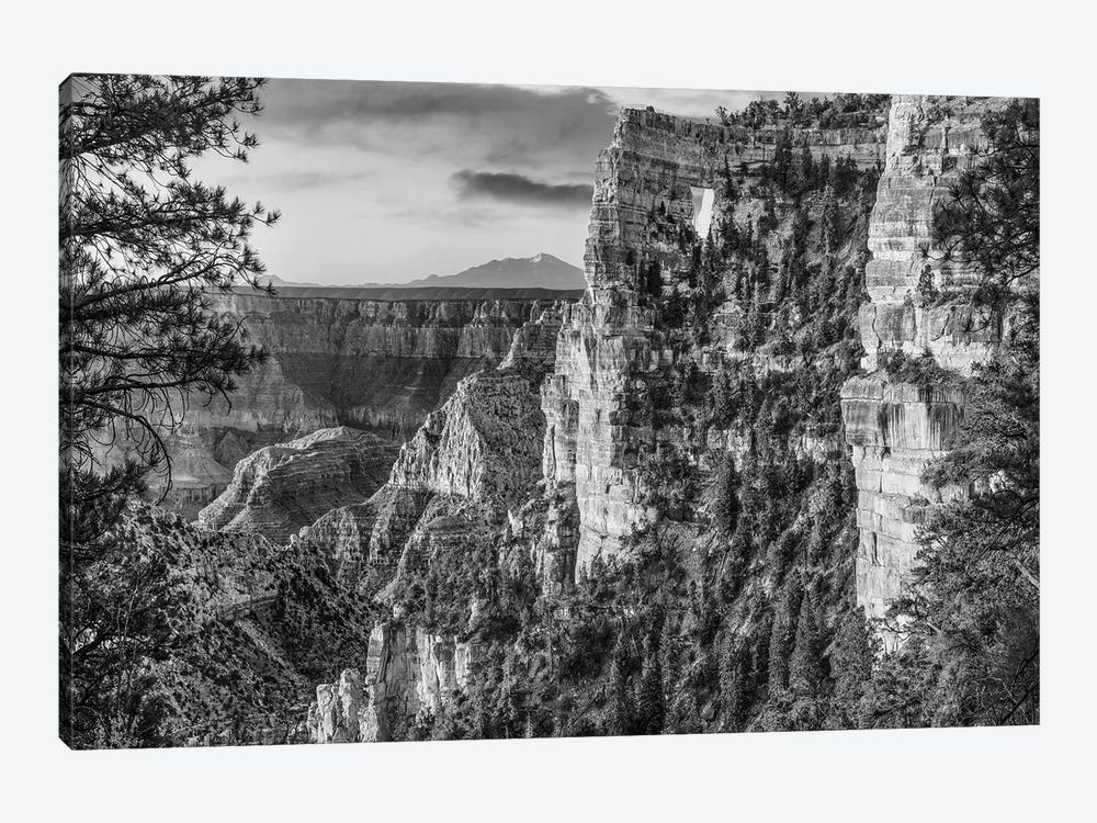 The Window near Walhalla Overlook, North Rim, Grand Canyon National Park, Arizona by Tim Fitzharris 1-piece Canvas Wall Art
