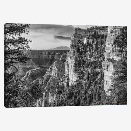 The Window near Walhalla Overlook, North Rim, Grand Canyon National Park, Arizona Canvas Print #TFI1808} by Tim Fitzharris Canvas Art Print