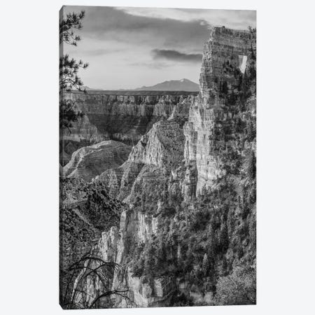 The Window near Walhalla Overlook, North Rim, Grand Canyon National Park, Arizona Canvas Print #TFI1809} by Tim Fitzharris Art Print