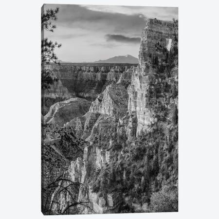 The Window near Walhalla Overlook, North Rim, Grand Canyon National Park, Arizona Canvas Print #TFI1809} by Tim Fitzharris Art Print