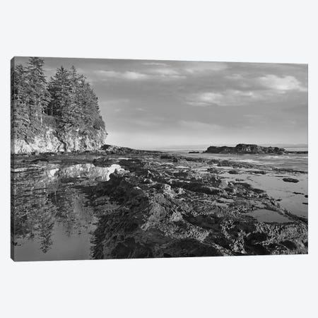 Tidepools at low tide, Botanical Beach, Juan de Fuca Provincial Park, Vancouver Island, British Columbia, Canada Canvas Print #TFI1810} by Tim Fitzharris Canvas Wall Art