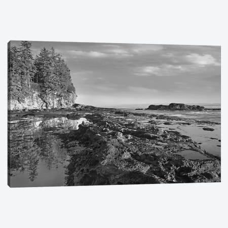 Tidepools at low tide, Botanical Beach, Juan de Fuca Provincial Park, Vancouver Island, British Columbia, Canada 3-Piece Canvas #TFI1810} by Tim Fitzharris Canvas Wall Art