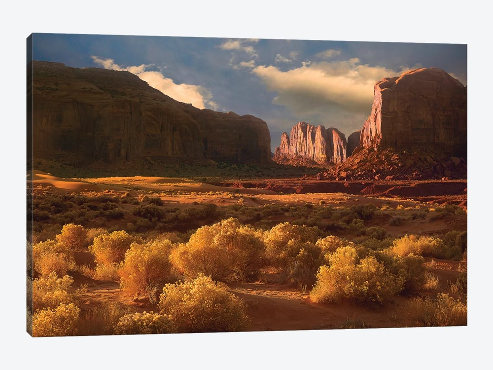 Camel Butte Rising Out Of Desert, Monument Valley, Arizona by Tim Fitzharris 1-piece Canvas Wall Art