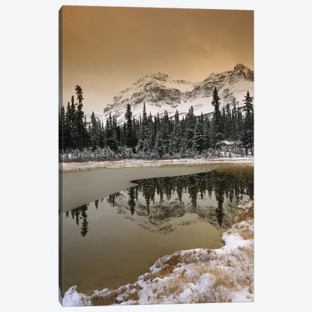 Canadian Rocky Mountains Dusted In Snow, Banff National Park, Alberta, Canada Canvas Print #TFI184} by Tim Fitzharris Canvas Wall Art