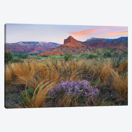 Caprock Canyons State Park, Texas - Horizontal Canvas Print #TFI185} by Tim Fitzharris Canvas Wall Art