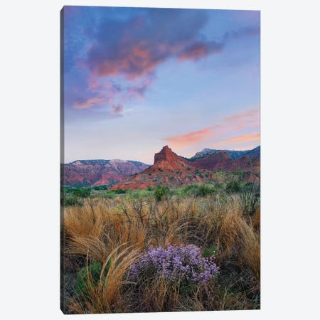 Caprock Canyons State Park, Texas - Vertical Canvas Print #TFI186} by Tim Fitzharris Canvas Artwork