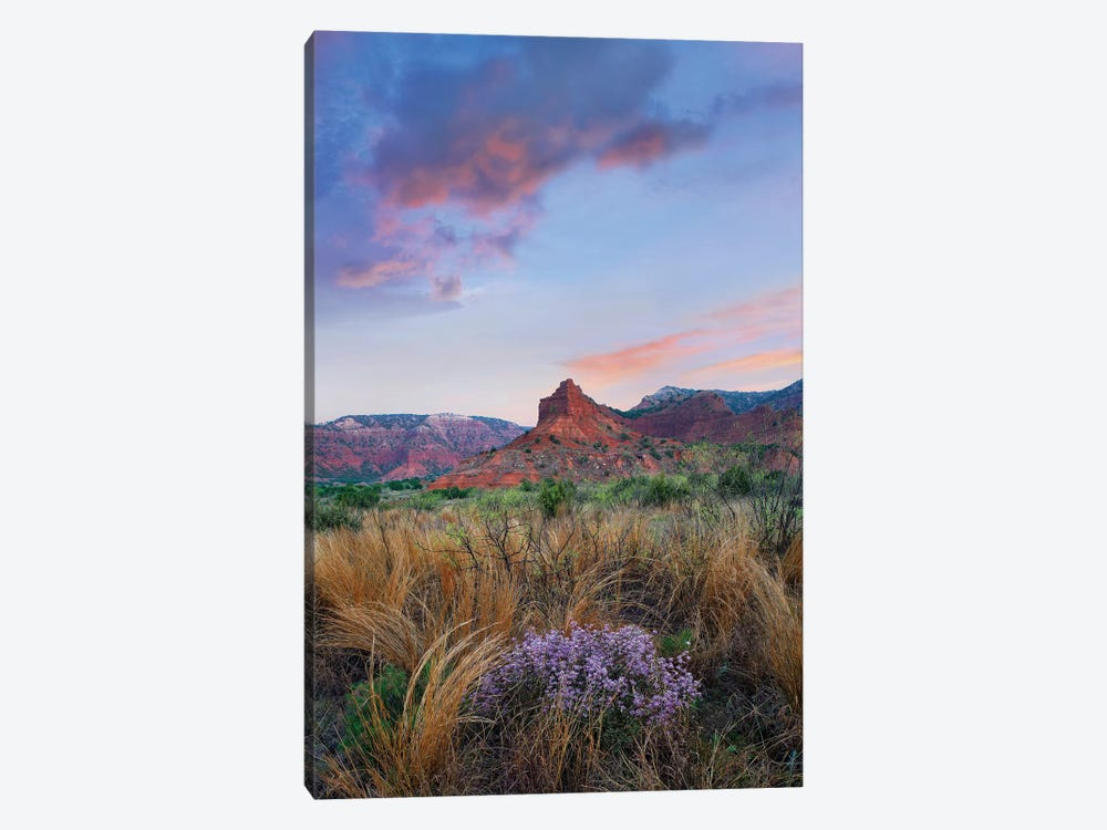 Caprock Canyons State Park, Texas - Vertical by Tim Fitzharris 1-piece Art Print