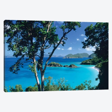 Caribbean Seen Through Trees, Virgin Islands National Park Canvas Print #TFI187} by Tim Fitzharris Canvas Wall Art