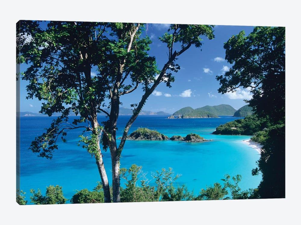 Caribbean Seen Through Trees, Virgin Islands National Park by Tim Fitzharris 1-piece Canvas Artwork