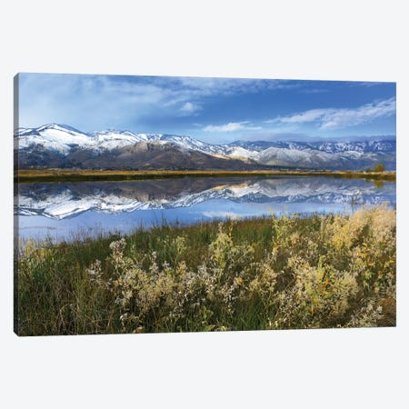Carson Range Reflected In Washoe Lake, Nevada Canvas Print #TFI188} by Tim Fitzharris Art Print