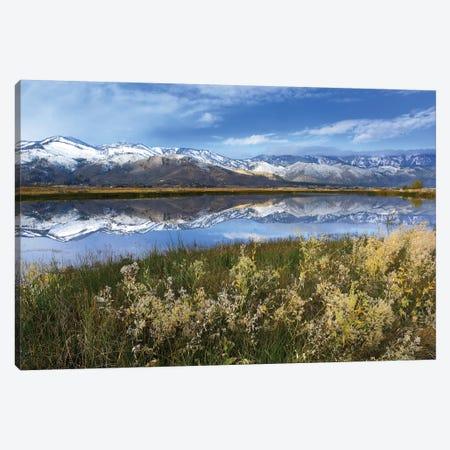 Carson Range Reflected In Washoe Lake, Nevada Canvas Print #TFI188} by Tim Fitzharris Art Print