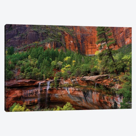 Cascades Tumbling 110 Feet At Emerald Pools, Note The Black Streaks Called Desert Varnish, Zion National Park, Utah IV Canvas Print #TFI195} by Tim Fitzharris Canvas Art Print