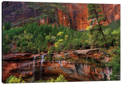 Cascades Tumbling 110 Feet At Emerald Pools, Note The Black Streaks Called Desert Varnish, Zion National Park, Utah IV Canvas Art Print