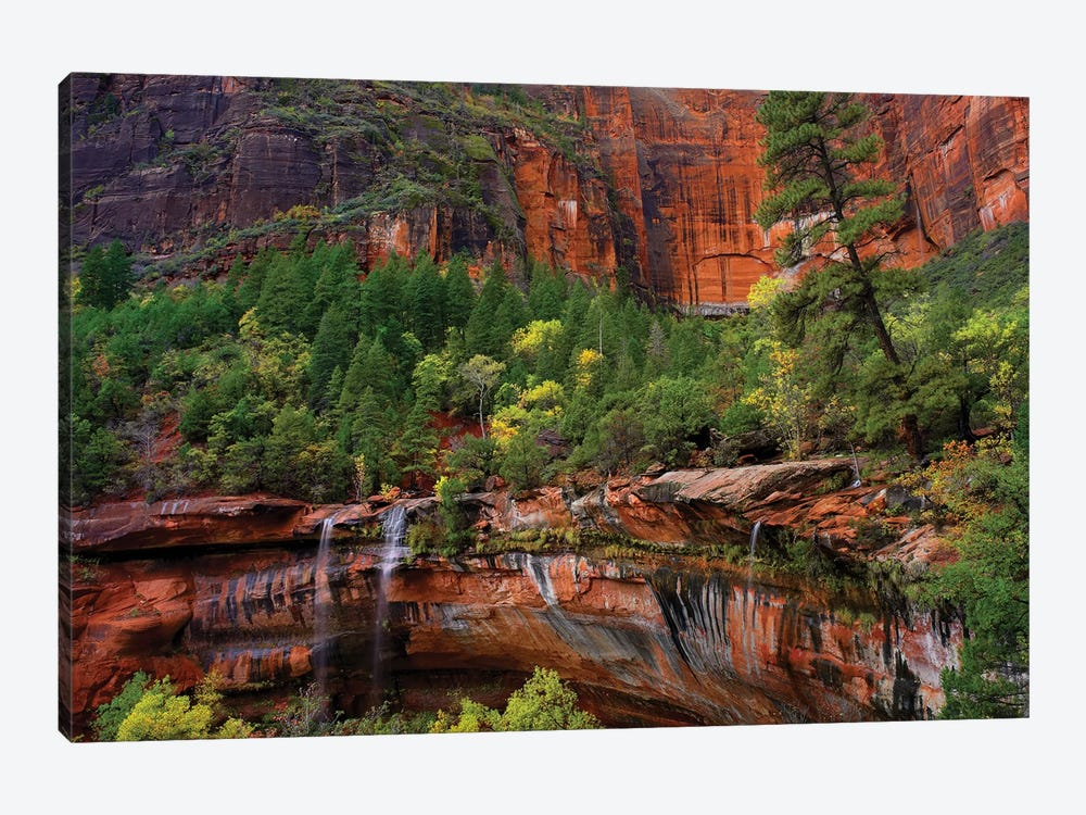 Cascades Tumbling 110 Feet At Emerald Pools, Note The Black Streaks Called Desert Varnish, Zion National Park, Utah IV by Tim Fitzharris 1-piece Art Print