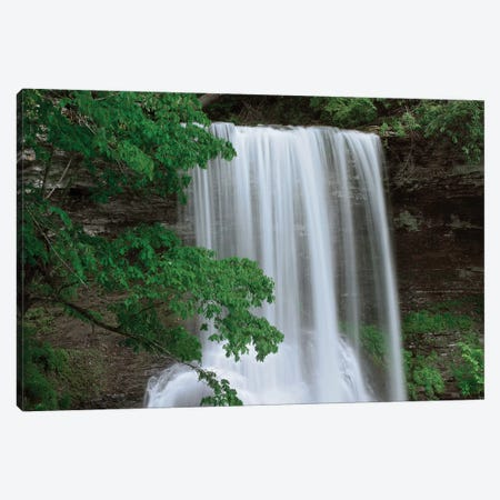 Cascading Waterfall In Jefferson National Forest, Virginia Canvas Print #TFI196} by Tim Fitzharris Canvas Print