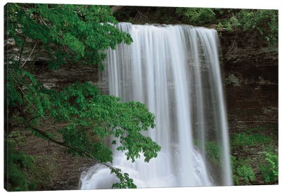 Cascading Waterfall In Jefferson National Forest, Virginia Canvas Art Print