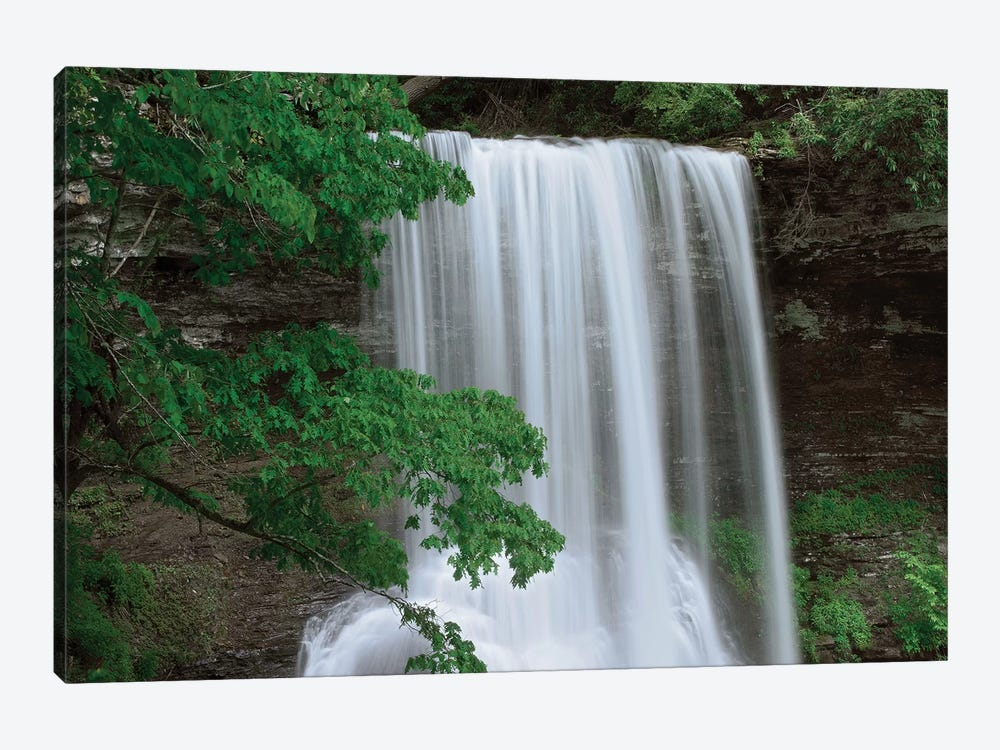 Cascading Waterfall In Jefferson National Forest, Virginia by Tim Fitzharris 1-piece Canvas Artwork