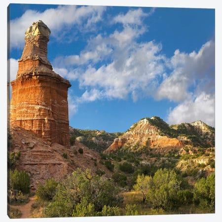 Lighthouse, Palo Duro Canyon State Park, Texas Panhandle, High Plains, Texas, USA Canvas Print #TFI1} by Tim Fitzharris Canvas Wall Art