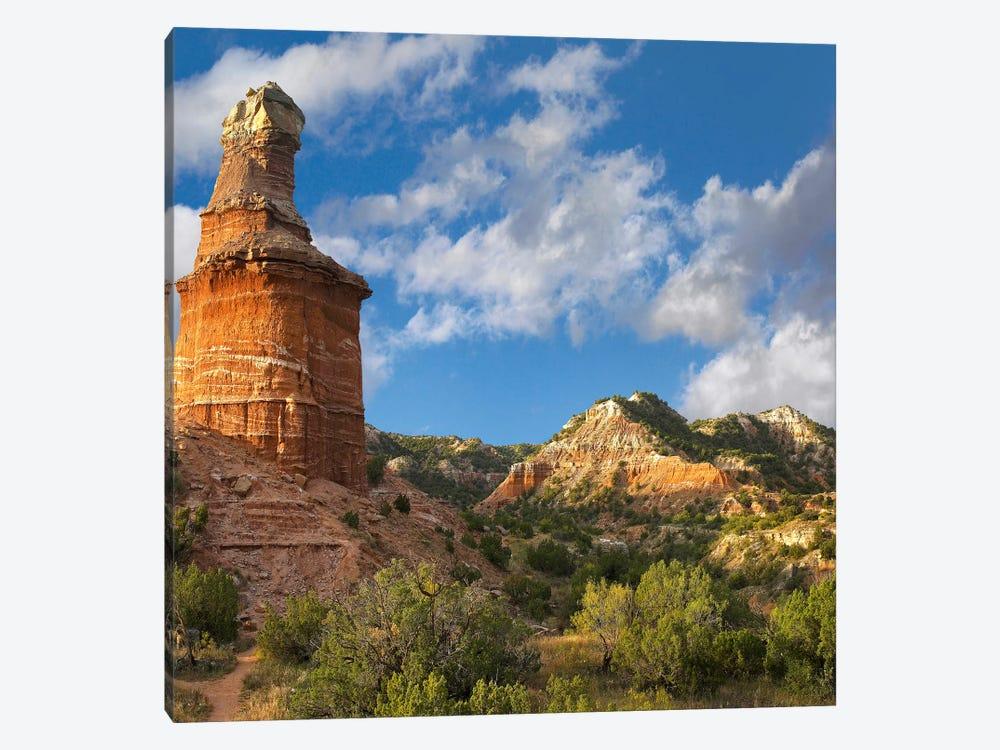 Lighthouse, Palo Duro Canyon State Park, Texas Panhandle, High Plains, Texas, USA by Tim Fitzharris 1-piece Art Print
