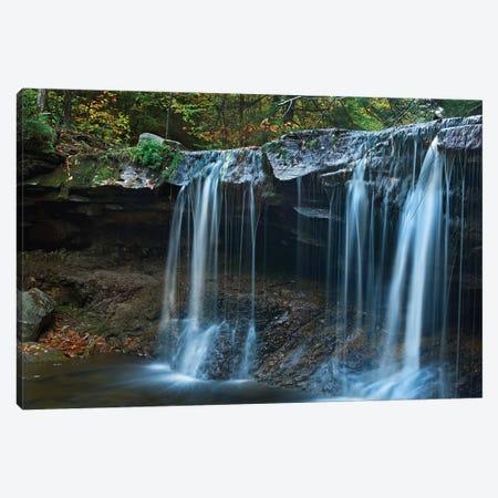 Cayuga Falls, Ricketts Glen State Park, Pennsylvania Canvas Print #TFI205} by Tim Fitzharris Canvas Art Print