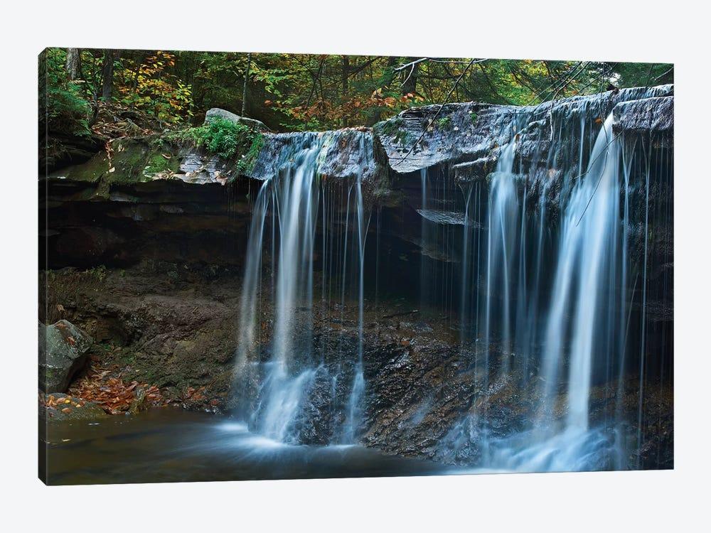 Cayuga Falls, Ricketts Glen State Park, Pennsylvania by Tim Fitzharris 1-piece Canvas Art