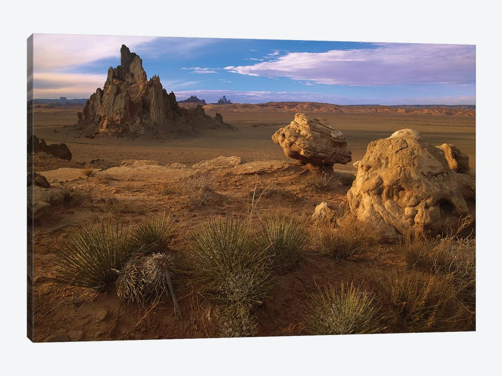 Church Rock, Eroded Volcanic Plug Reaching 300 Feet, Navajo Reservation, Monument Valley Navajo Tribal Park, Arizona by Tim Fitzharris 1-piece Canvas Artwork