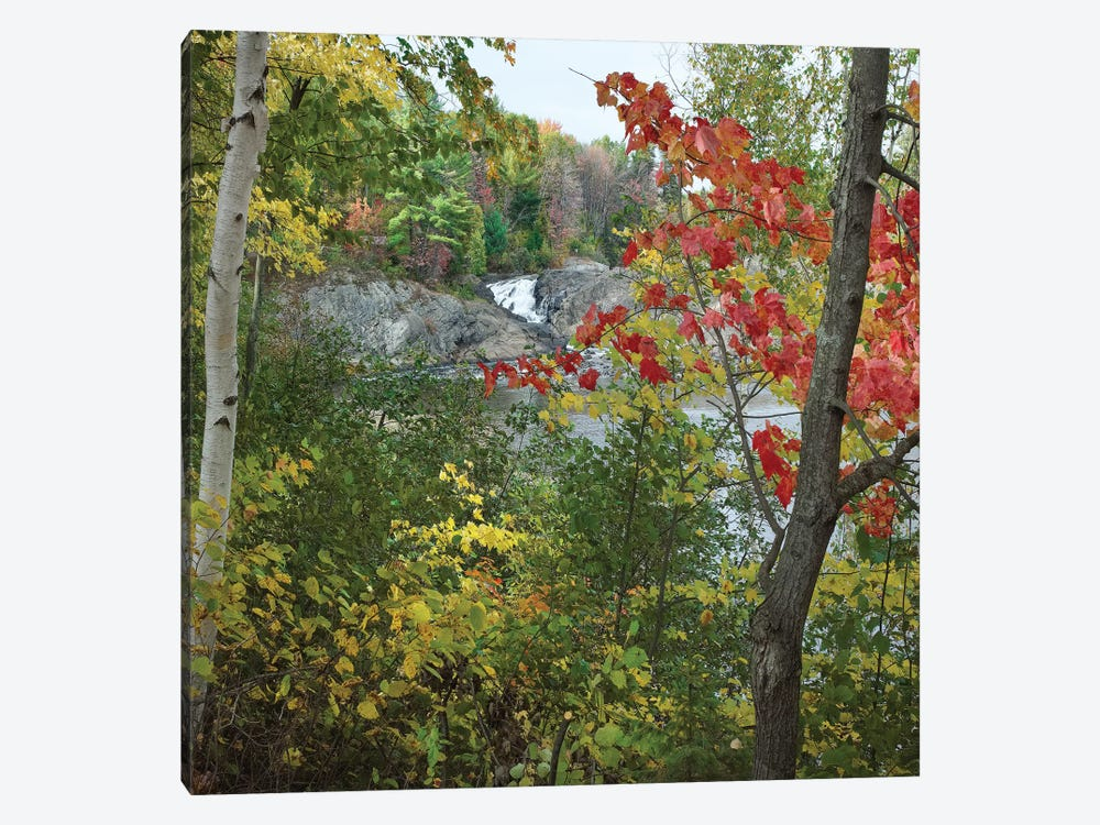 Chutes Provincial Park, Ontario, Canada I by Tim Fitzharris 1-piece Canvas Art