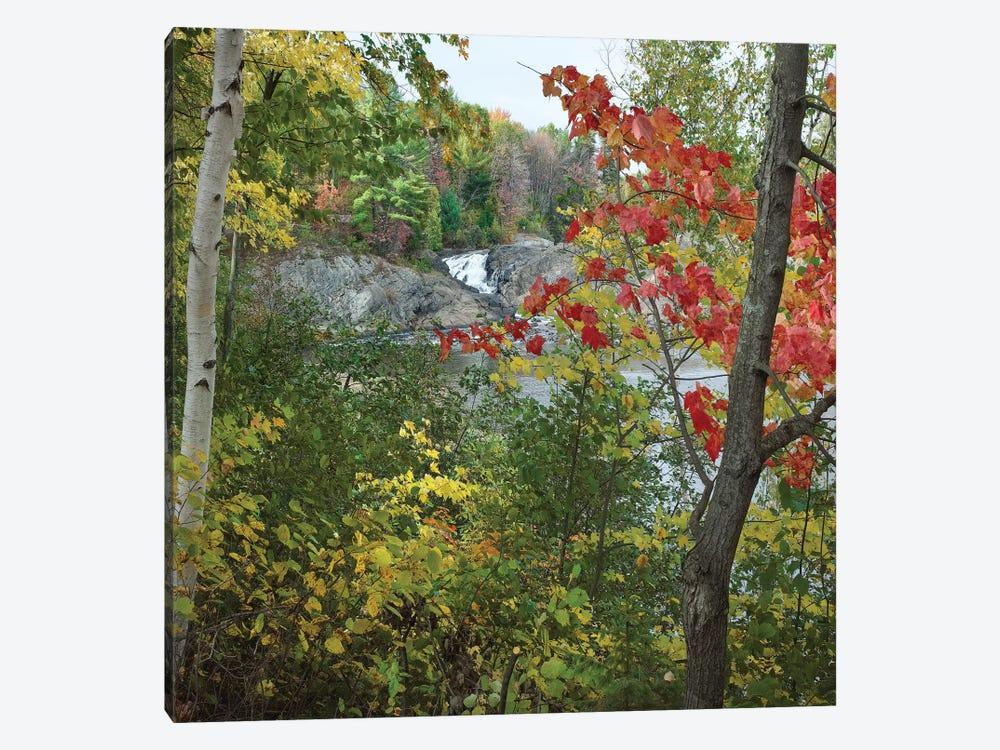 Chutes Provincial Park, Ontario, Canada I by Tim Fitzharris 1-piece Canvas Art