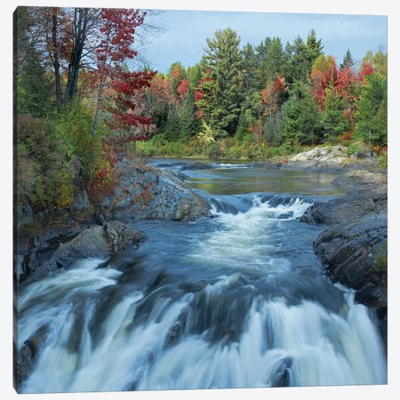 Chutes Provincial Park, Ontario, Canada II Canvas Print #TFI215} by Tim Fitzharris Canvas Artwork