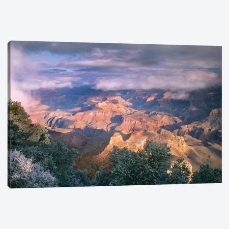 Clearing Skies Over The South Rim, Grand Canyon National Park, Arizona Canvas Print #TFI220} by Tim Fitzharris Canvas Artwork