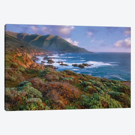 Cliffs And The Pacific Ocean, Garrapata State Beach, Big Sur, California Canvas Print #TFI221} by Tim Fitzharris Canvas Artwork