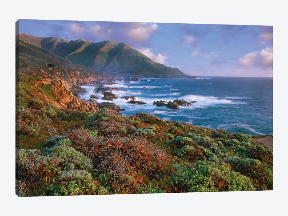Cliffs And The Pacific Ocean, Garrapata State Beach, Big Sur, California by Tim Fitzharris 1-piece Canvas Wall Art