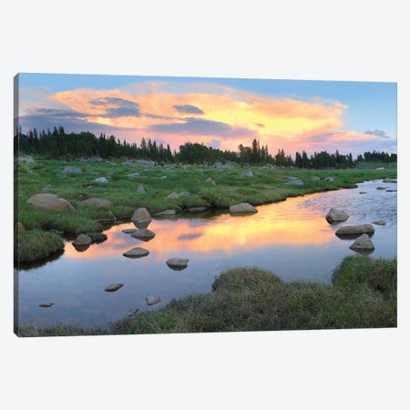 Clouds And Sunset Reflected In Stream, Hellroaring Plateau, Montana Canvas Print #TFI222} by Tim Fitzharris Canvas Artwork
