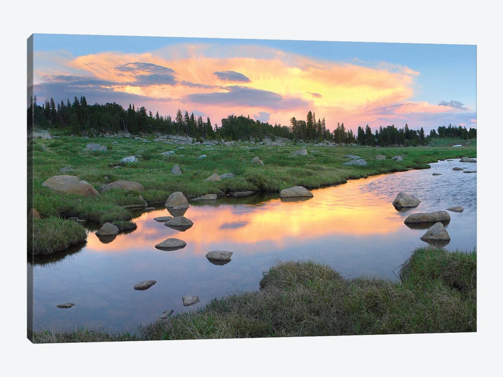 Clouds And Sunset Reflected In Stream, Hellroaring Plateau, Montana by Tim Fitzharris 1-piece Art Print