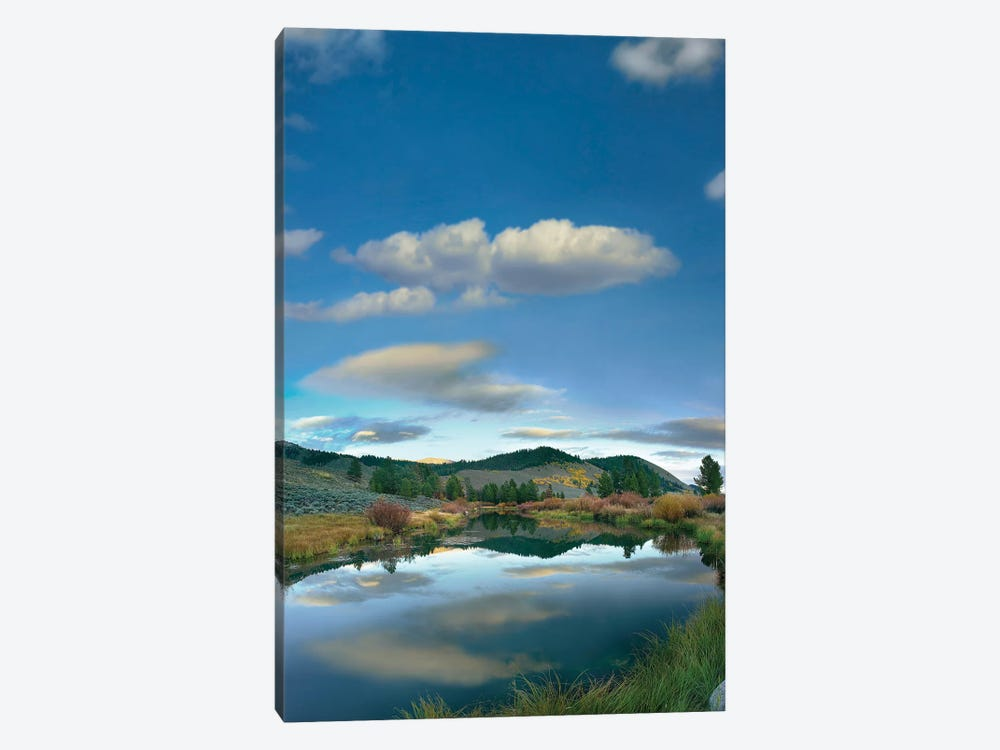 Clouds Reflected In River, Salmon River Valley, Idaho by Tim Fitzharris 1-piece Canvas Art