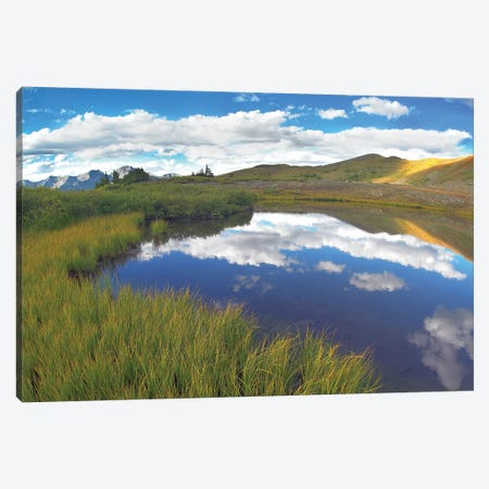 Clouds Reflected In Water At Cottonwood Pass, Rocky Mountains, Colorado Canvas Print #TFI225} by Tim Fitzharris Art Print