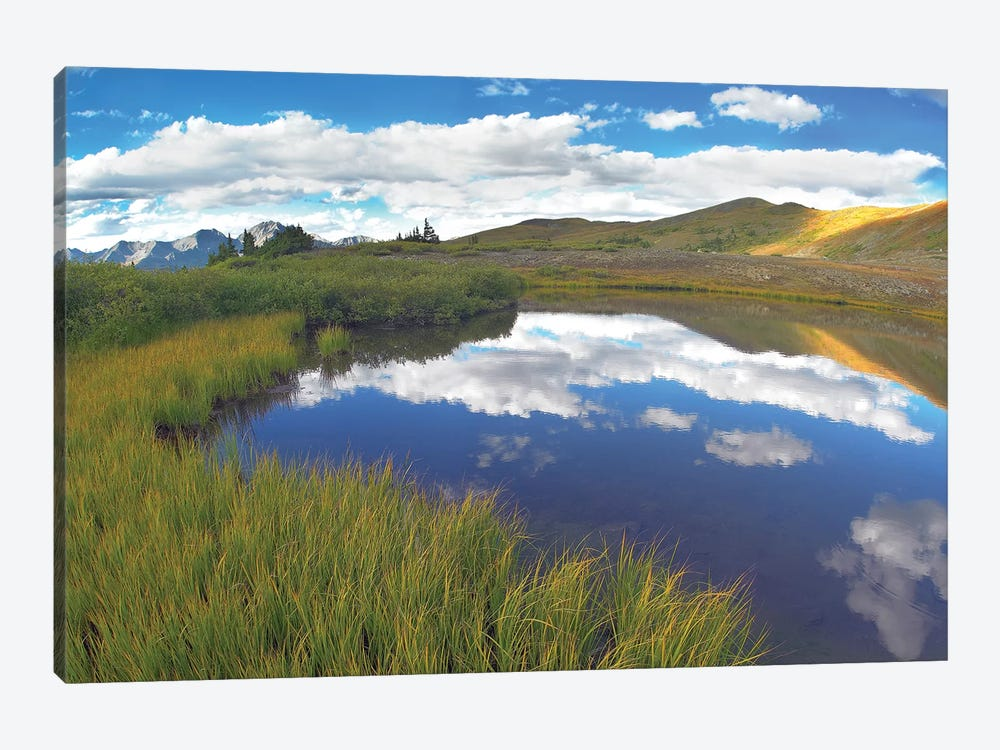 Clouds Reflected In Water At Cottonwood Pass, Rocky Mountains, Colorado by Tim Fitzharris 1-piece Canvas Artwork